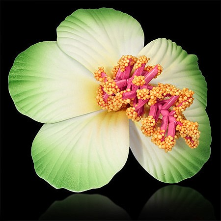 Grüne Hibiscus Haarklammer