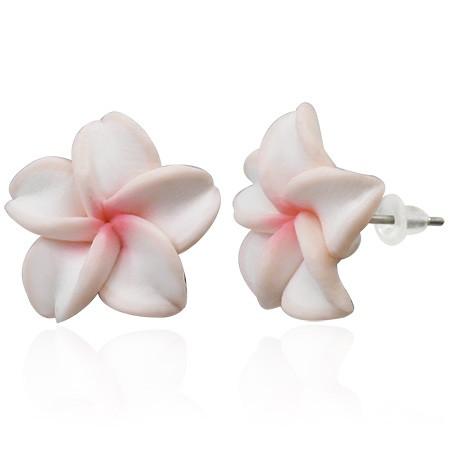 Weiß Rosa Plumeria